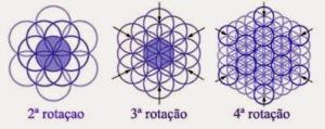 flordavida-rotação