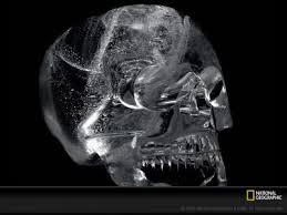 Cranios-Post14.06.2015-4