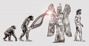 Genoma-Post-23.06.2015-13