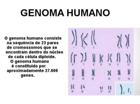 Genoma-Post-23.06.2015-3