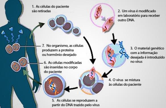 Genoma-Post-01.07.2015-1