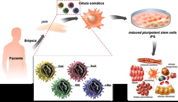 Genoma-Post-01.07.2015-19