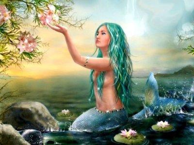 Sereia