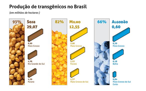 Transgênicos-Post-12.08.2015-15