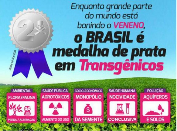 Transgênicos-Post-12.08.2015-16