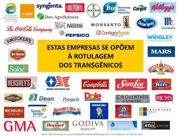 Transgênicos-Post-12.08.2015-17