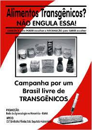Transgênicos-Post-12.08.2015-38