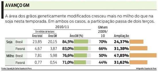 Transgênicos-Post-12.08.2015-40