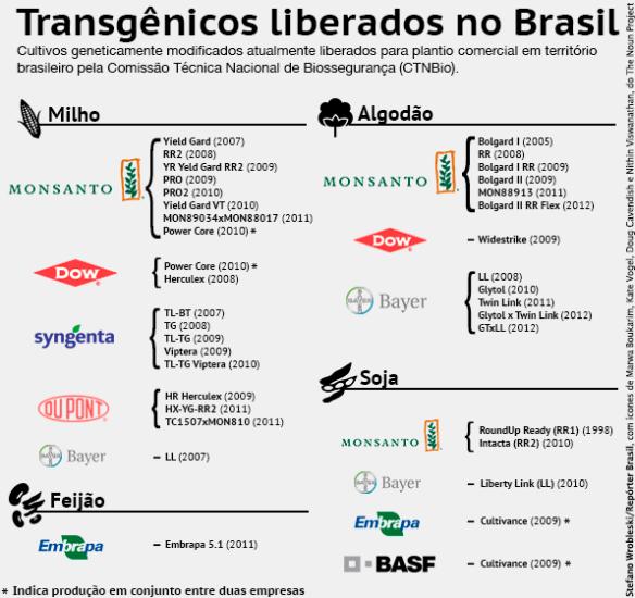 Transgênicos-Post-12.08.2015-45