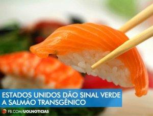 Transgênicos-Post-19.08.2015-16