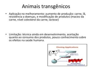 Transgênicos-Post-19.08.2015-4