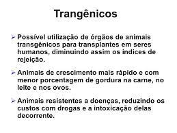 Transgênicos-Post-19.08.2015-5