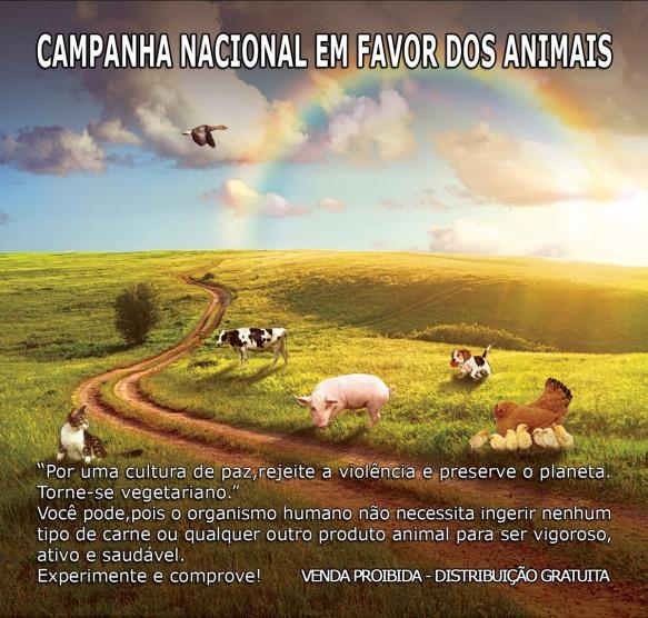 Campanha Animais-Post-15.09.2015