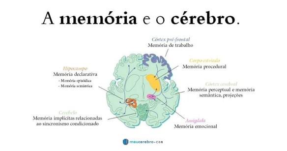 Cérebro-Post-09.10.2015-4