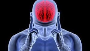 Cérebro-Post-16.10.2015-8