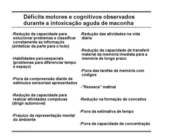 Cérebro-Post-06.11.2015-14