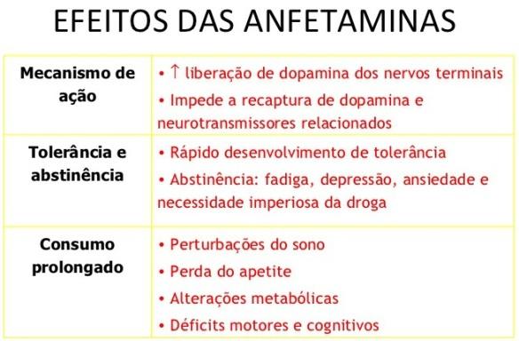Cérebro-Post-20.11.2015-10