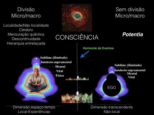 Cientistas-Post-19.11.2015-6