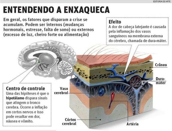 Cérebro-Post-11.12.2015-1
