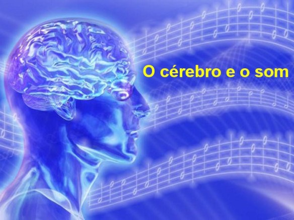 Cérebro-Post-18.12.2015