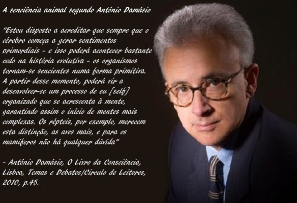 Cientistas-Post-22.12.2015-1