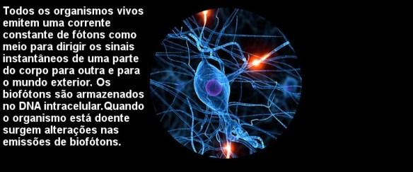 Cientistas-Post-05.01.2016-9