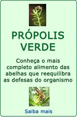 Própolis-Post-29.05.2016-8
