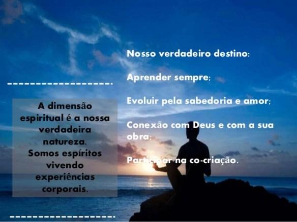 Vida Holística-Post-25.05.2016-9