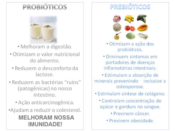 Probioticos-Post-24.08.2016-1
