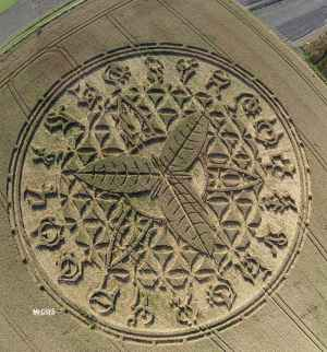 crop-circle_1