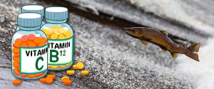 omega-3-vitaminas