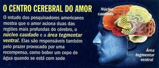 centro-cerebral-do-amor
