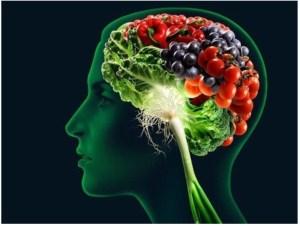 cerebro-futas-verduras