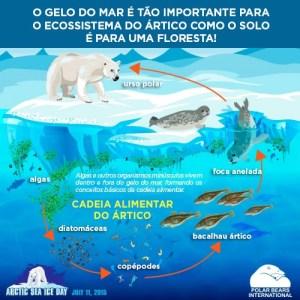 clima-terra-gelo-urso-polar