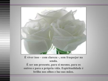 espiritualidade-e-consciencia-rosas-brancas