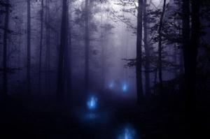 fogo-azul-floresta