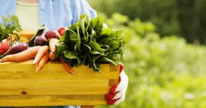 legumes-saude