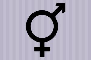 masculino-feminino