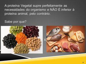 saude-proteina-vegetal