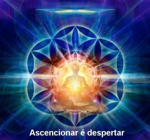 ascensao-despertar_2