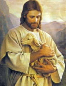 jesus-ovelha